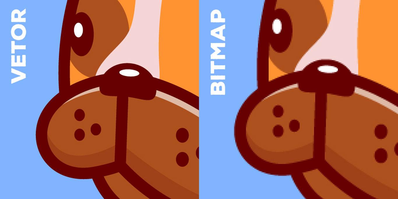 Diferença entre Vetor e Bitmap - Portal Sublimatico